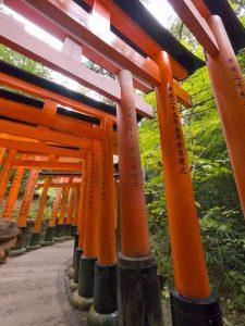 Torii Gate of Fushimi Inari Taisha